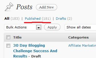 30 Day Blogging Challenge End